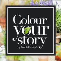 Colour Your Story - spring-summer 2020 edition